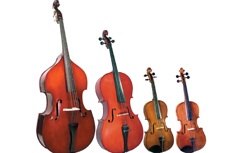 Violas, Cellos & Basses