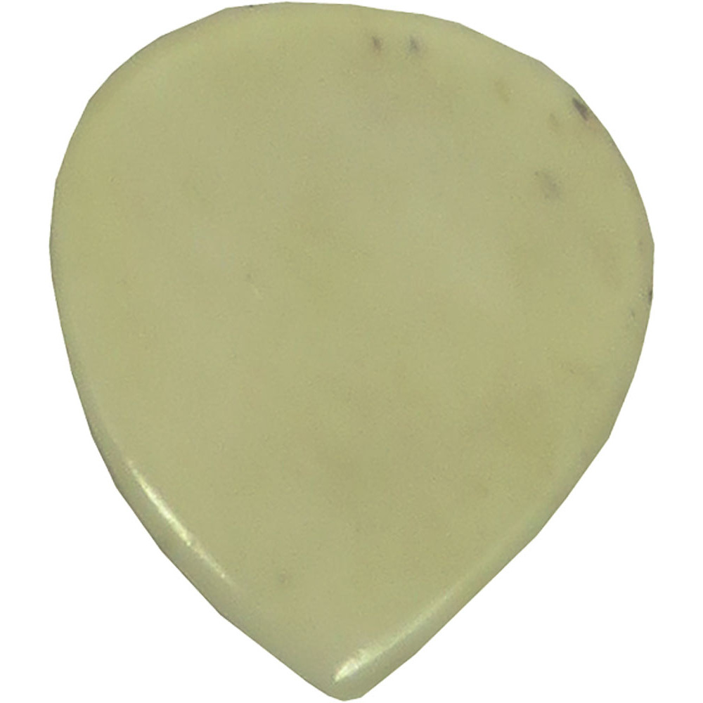 Viking Bone Guitar Picks