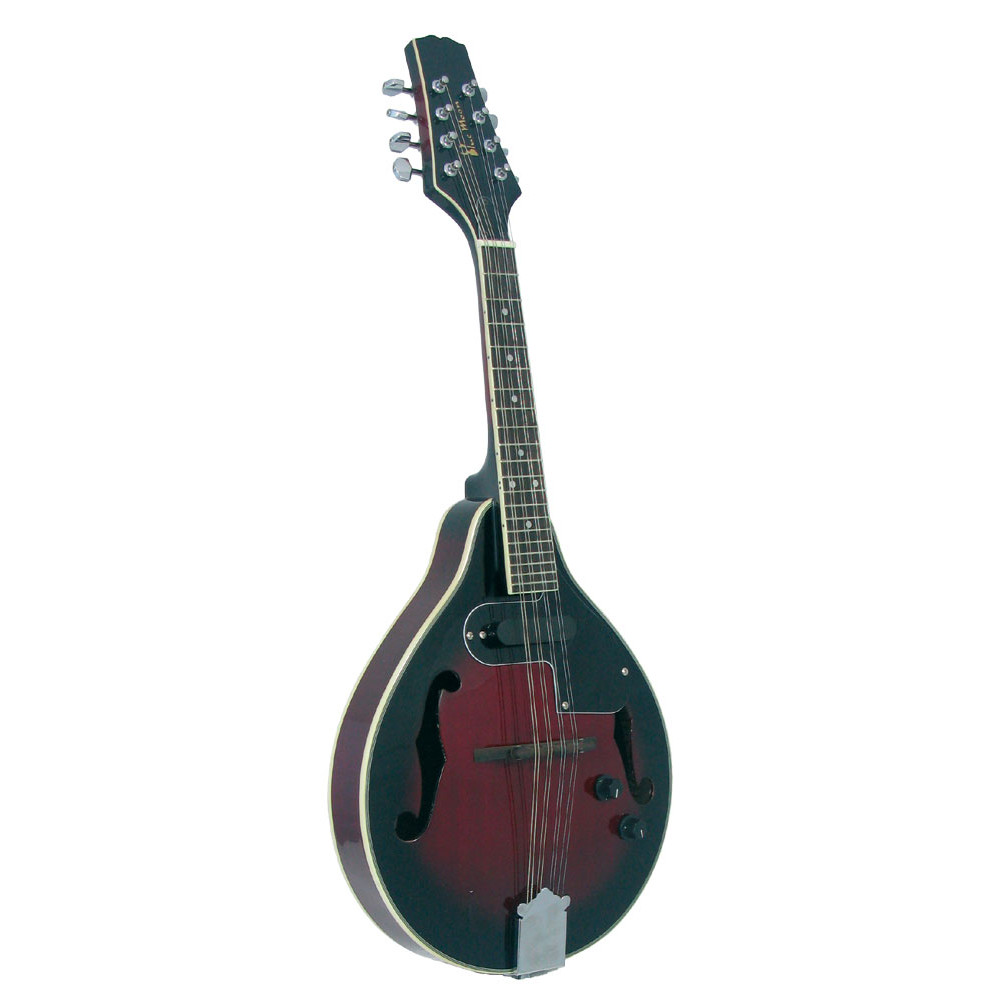Blue Moon BM-07 Electro Acoustic Mandolin