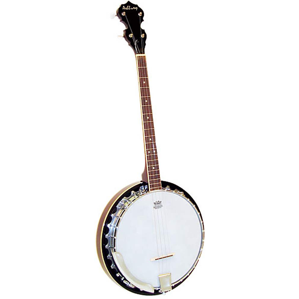 Ashbury AB-35T Tenor Banjo, 19 Fret, Mahogany