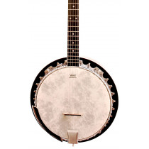 Barnes and Mullins BJ300 The Perfect 5 String Banjo