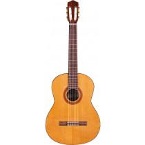 Cordoba C5-CED Classical Guitar, Cedar Top