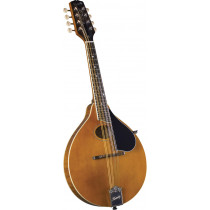 Kentucky KM-272 A Style Mandolin, Amber Finish
