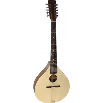 Ashbury Rathlin 10 String Cittern