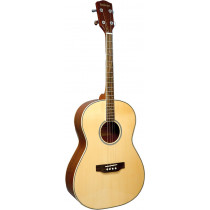Ashbury AT-14 Tenor Guitar, Spruce Top GDAE