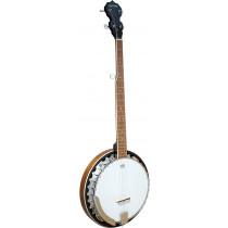 Ashbury AB-35 5 String Banjo, Mahogany Rim