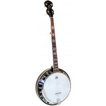 Ashbury AB-45-5 5 String Banjo, Brass Tone Ring