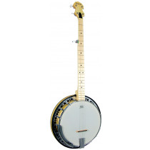 Ashbury AB-65-5 5 string Banjo, Maple Rim