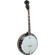 Ashbury AB-45T Tenor Banjo, Brass Tone Ring