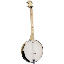 Ashbury AB-25T Openback Tenor Banjo, Maple Rim