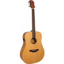 Ashbury AG-44E Dreadnought Guitar, Electro