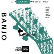 Galli G210 5 String Banjo, Light, Nickel