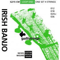 Galli G214CM Irish Tenor Banjo, Med, Nickel
