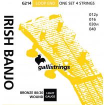 Galli G214 Irish Tenor Banjo. Med. Bronze