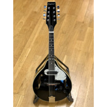 Tanglewood 'TWM T BKP E' Electro Mandolin, good condition with hard case.