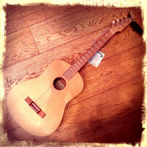 Roger Terry tenor uke, hand made in Bristol