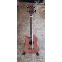 Gold Tone Left Handed Micro Bass with Bag