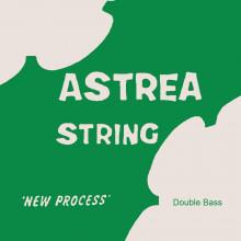 Astrea Double Bass D string