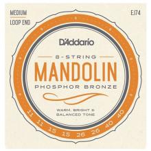 D\'Addario XTM11540 Phosphor Bronze Mandolin Strin