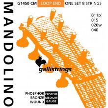 Galli G1450CM Mandolin Strings, Ph/Bz.Medium