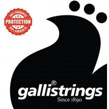 Galli G220 CM 5 String Banjo, Medium. Nickel
