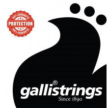 Galli LS1659 Resophonic Guitar Set.G Tuning