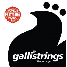 Galli LS1560 Weissenborn Guitar Set D Tunin