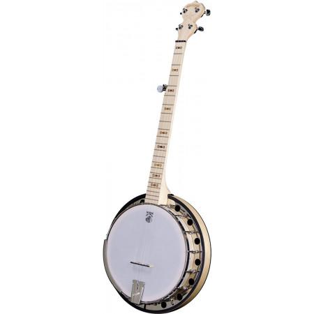 Deering Goodtime 5 Str Banjo, Resonator