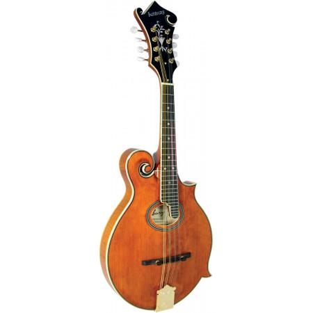 Ashbury AM-370 F Style Mandolin, Oval Soundhol