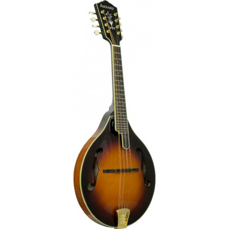Ashbury AM-510 A Style Bluegrass Mandolin