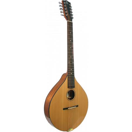Ashbury Style E Celtic Cittern, 10 string