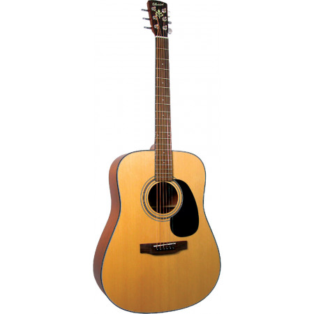 Bristol BD-16 Dreadnought Guitar