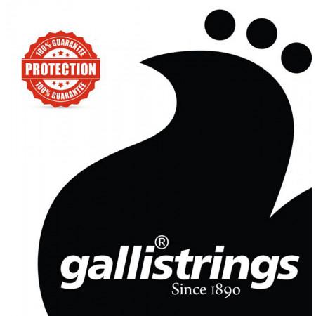 Galli LS1558 Weissenborn Guitar Set G Tunin